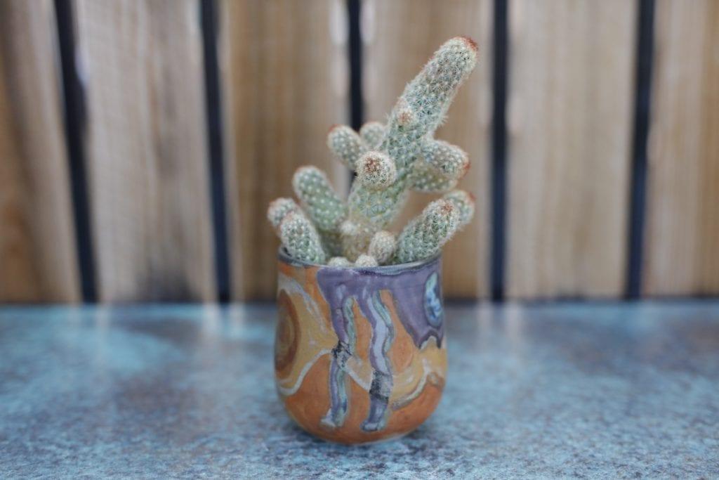 10. Ceramic Plant vase $20